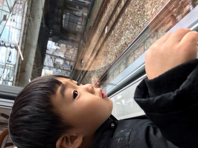 男二人電車旅