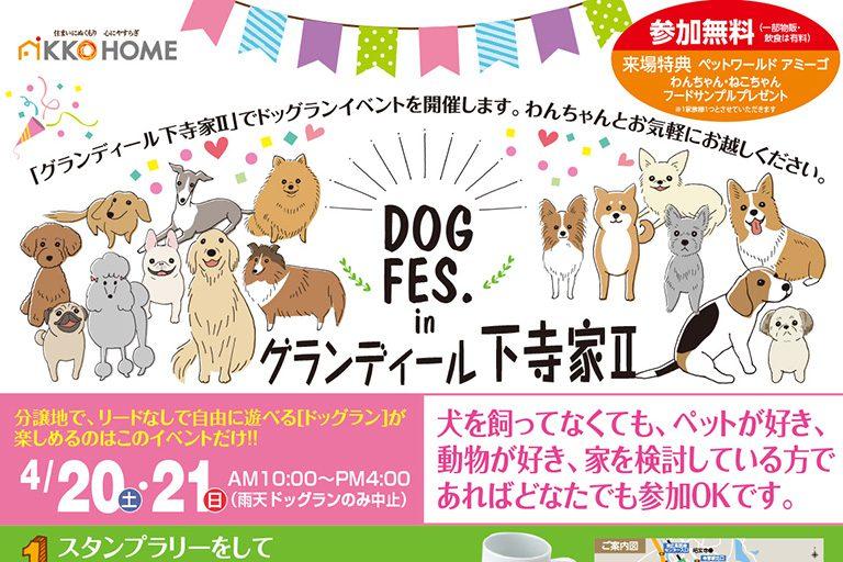 【東広島市西条町寺家】4月20日・21日 DOG FES.inグランディール下寺家Ⅱ